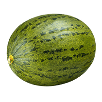 Melao-Pele-de-Sapo-3kg