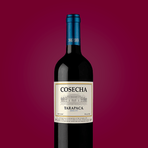 harmonizacao-vinho-chileno-tarapaca-cosecha-merlot-750ml