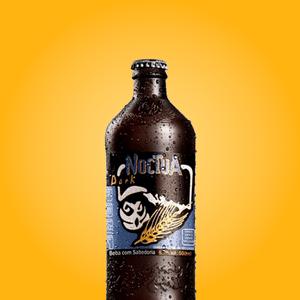 harmonizacao-cerveja-coruja-noctua-dark-500ml
