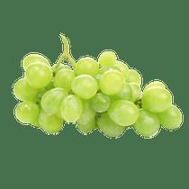 Uva-Thompson-Verde-sem-semente-500g--Bandeja-