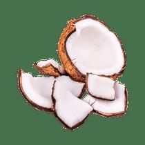 Coco-em-pedacos--1-saco-aprox.-200g-