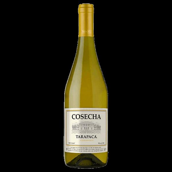 b4e750ae2 Vinho Chileno Tarapacá Cosecha Chardonnay 750ml
