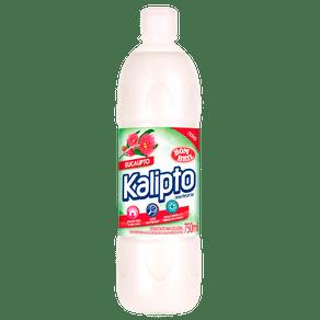 Desinfetante-Bom-Bril-Kalipto-Eucalipto-750ml
