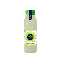 Limonada-Natural-One-Adocada-900ml