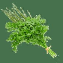 Cheiro-Verde-Un-1961