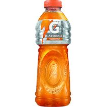 4b41b1449a29666e81cd6fada005b918_bebida-isotonica-gatorade-tangerina-500ml_lett_1