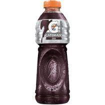 da966cbec63b66edb5e7a6e407eee1a8_bebida-isotonica-gatorade-uva-500ml_lett_1