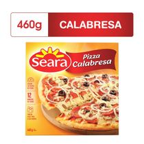 cb6085497d0c60233dd017e89ece2d7c_pizza-seara-de-calabresa-460g_lett_1
